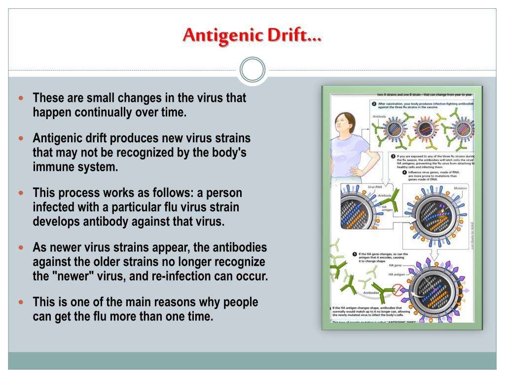 Antigenic Drift…