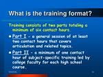what is the training format