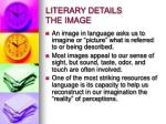 literary details the image