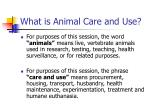 what is animal care and use
