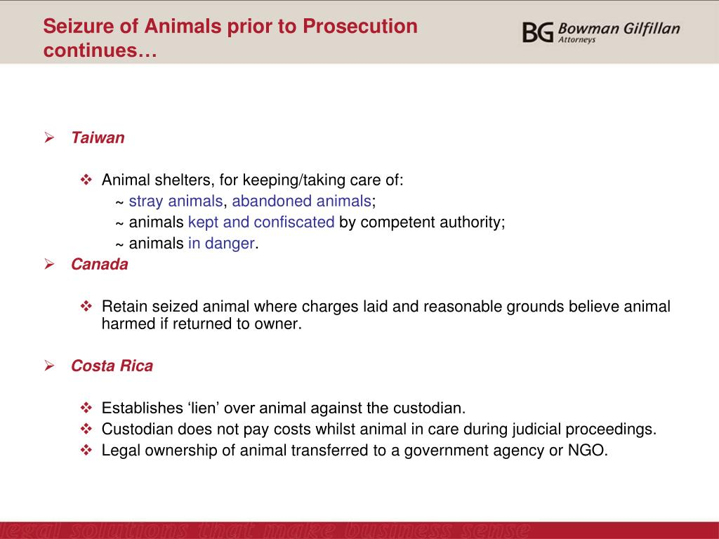 Seizure of Animals prior to Prosecution continues…