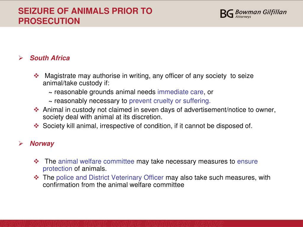 SEIZURE OF ANIMALS PRIOR TO PROSECUTION