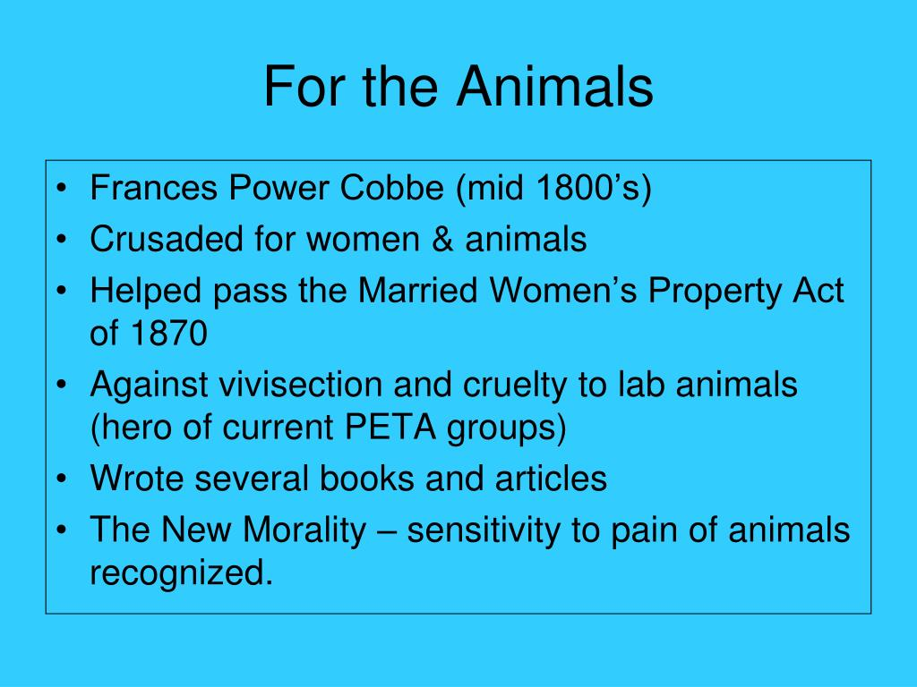 For the Animals