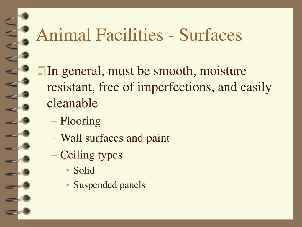 Animal Facilities - Surfaces