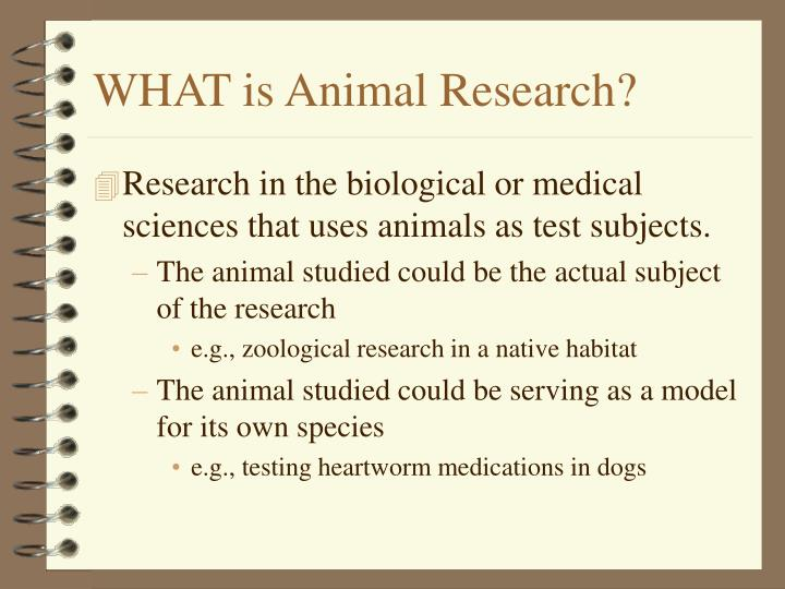 What is animal research