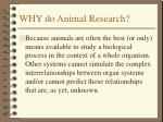 why do animal research