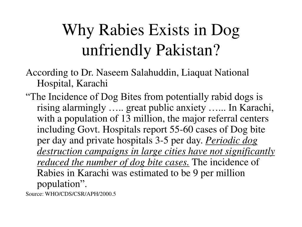 Why Rabies Exists in Dog unfriendly Pakistan?
