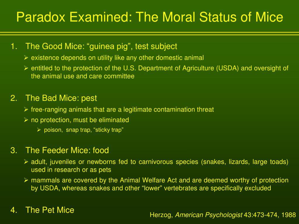 Paradox Examined: The Moral Status of Mice