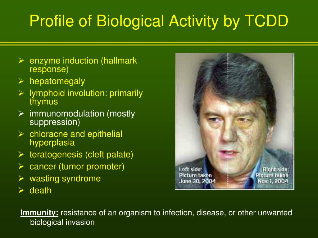 Profile of Biological Activity by TCDD