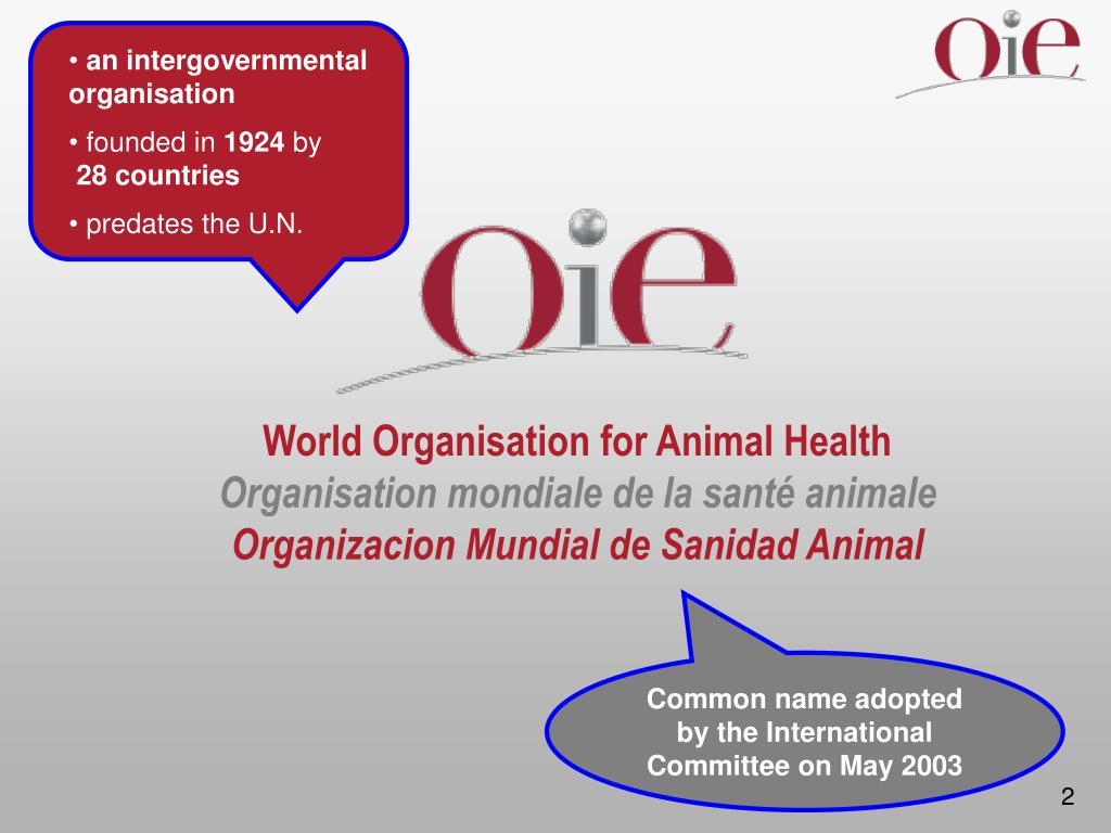 an intergovernmental organisation