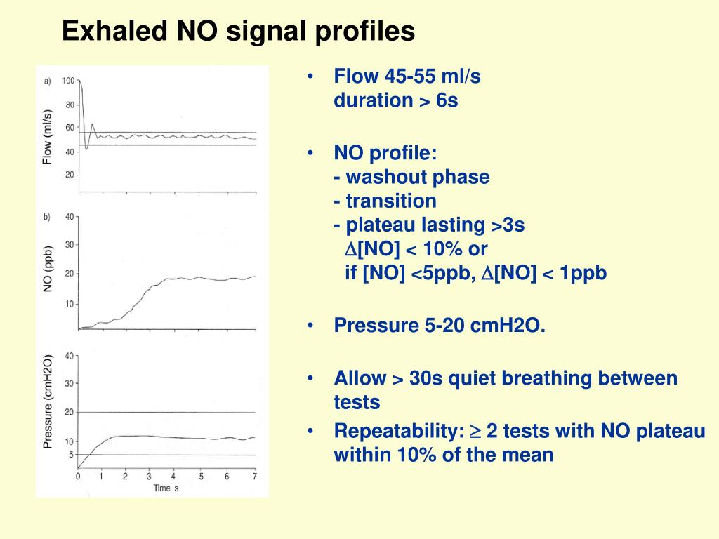 Exhaled NO signal profiles