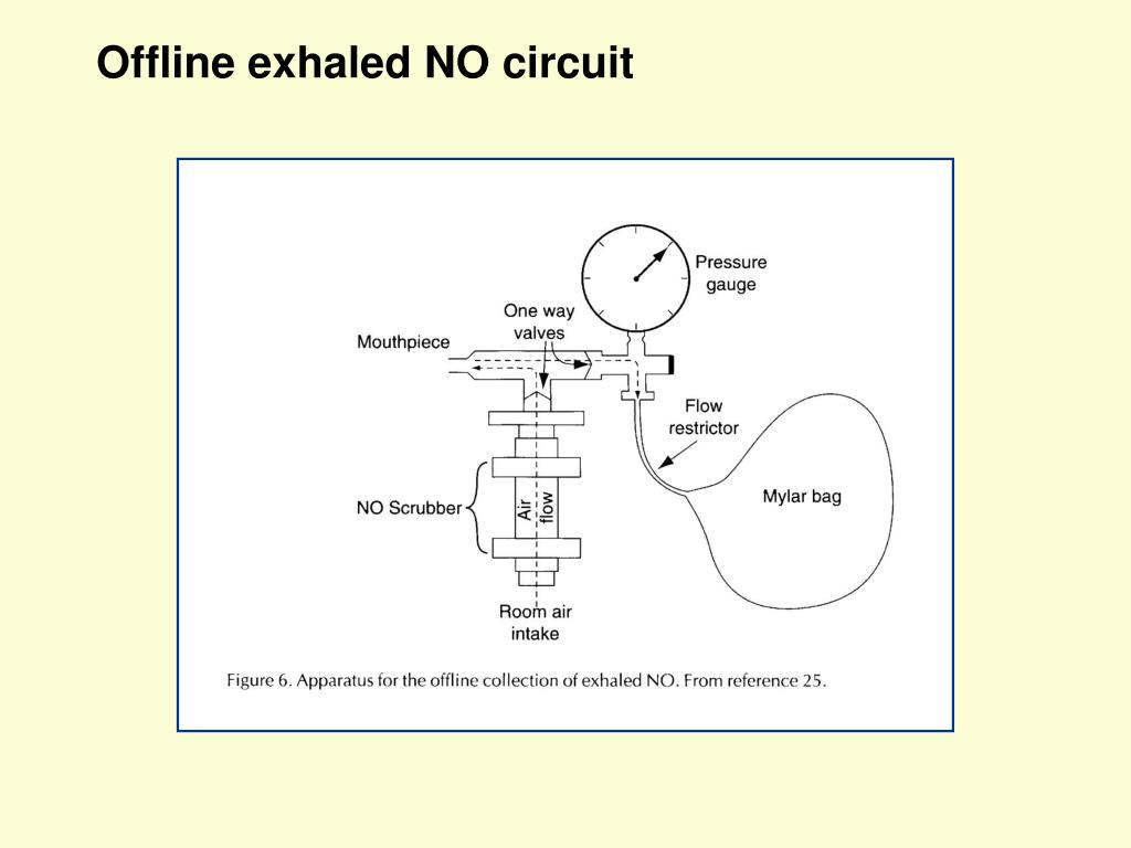 Offline exhaled NO circuit