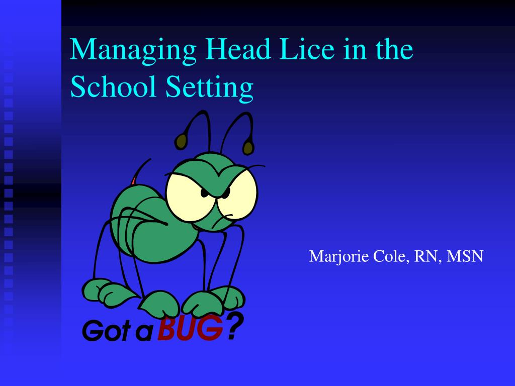 managing head lice in the school setting l.