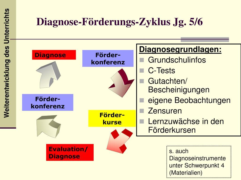 Diagnose-Förderungs-Zyklus Jg. 5/6