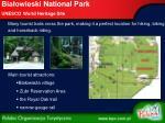 bia owieski national park unesco world heritage site5