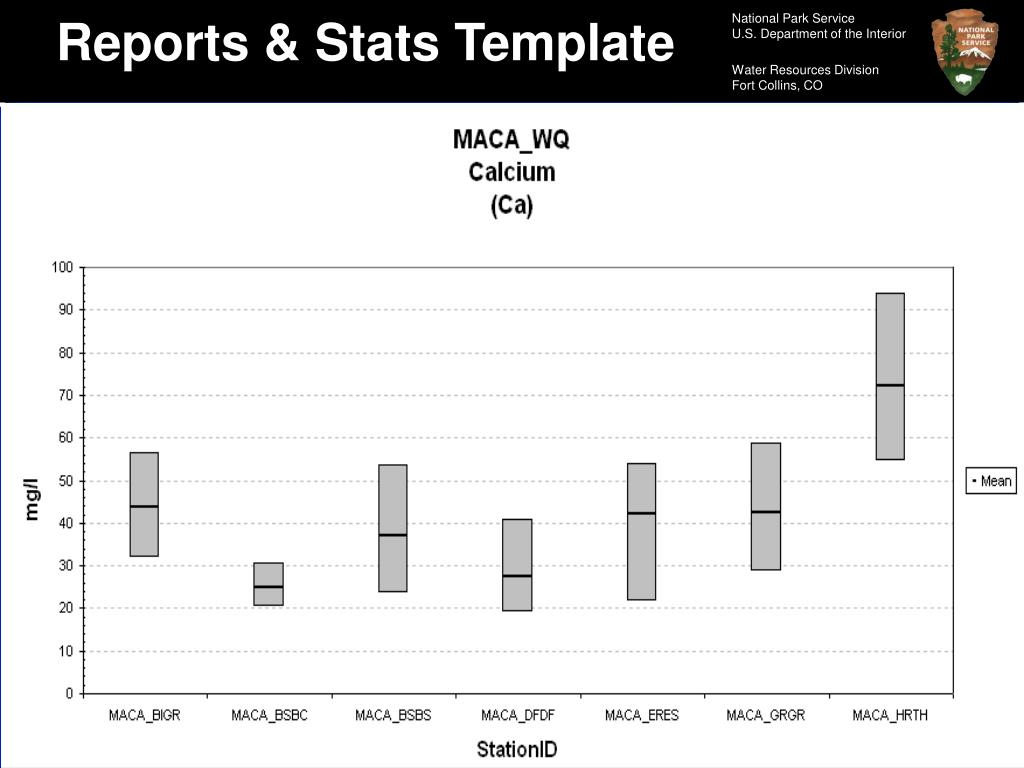 Reports & Stats Template