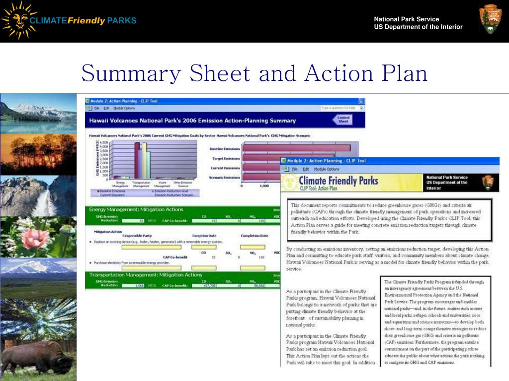 Summary Sheet and Action Plan