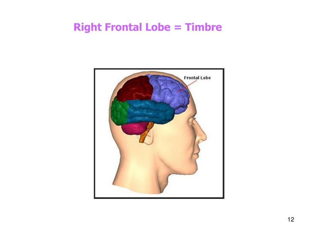 Right Frontal Lobe = Timbre