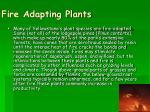 fire adapting plants