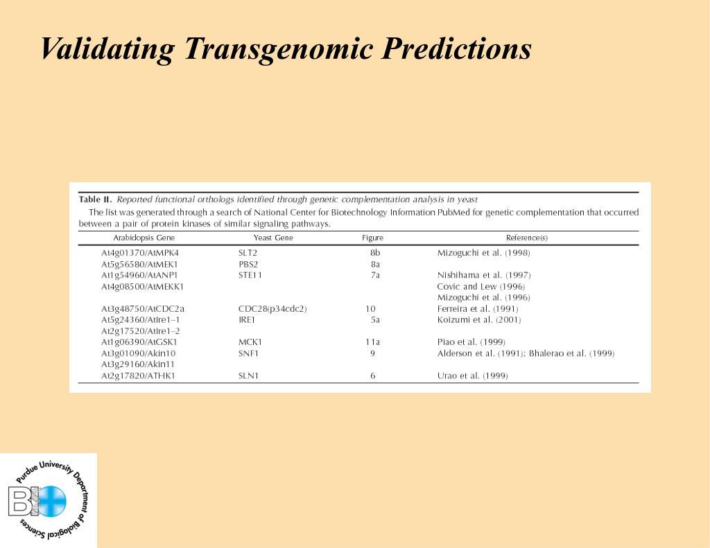 Validating Transgenomic Predictions
