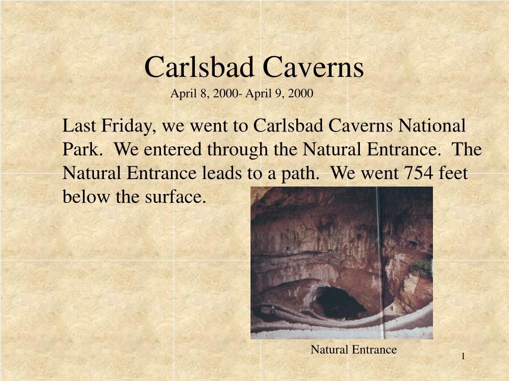 carlsbad caverns l.
