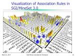 visualization of association rules in sgi mineset 3 0