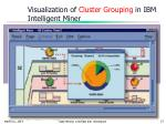 visualization of cluster grouping in ibm intelligent miner