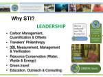 why sti17