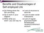 benefits and disadvantages of self employed life