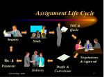 assignment life cycle