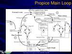 propice main loop