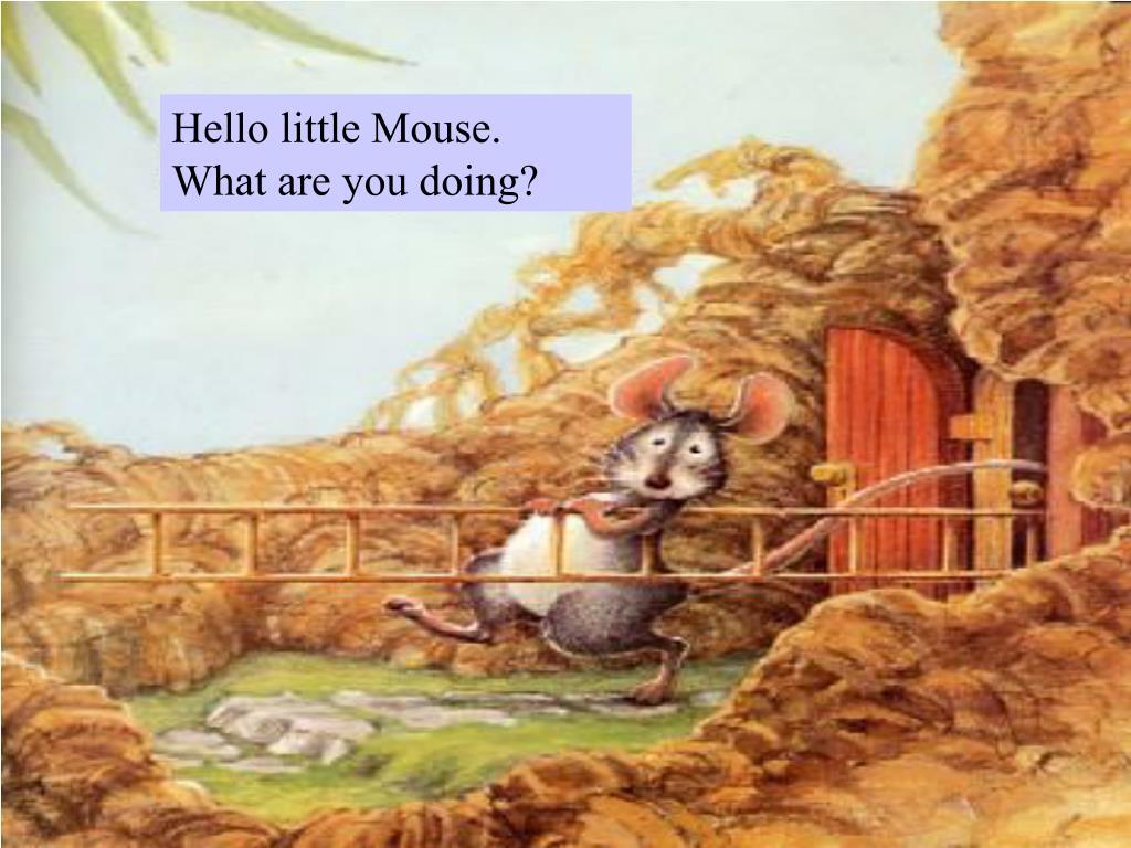 Hello little Mouse.
