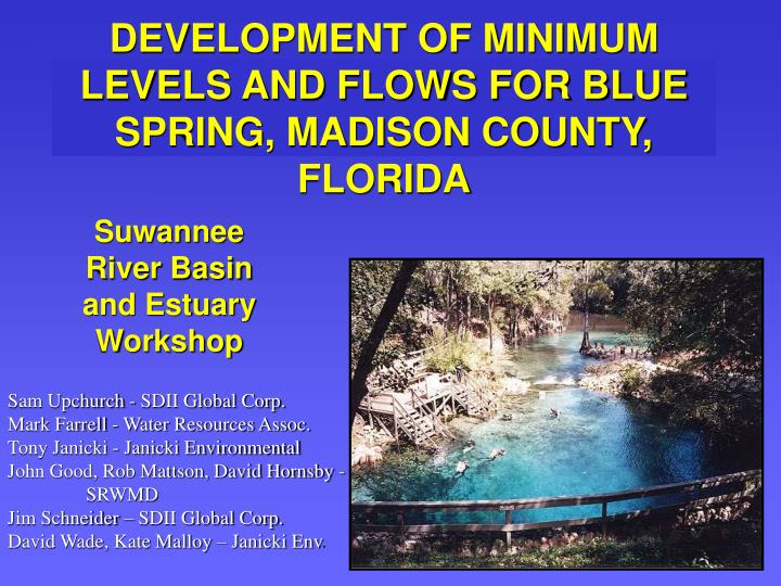 development of minimum levels and flows for blue spring madison county florida n.