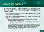 individual agents29