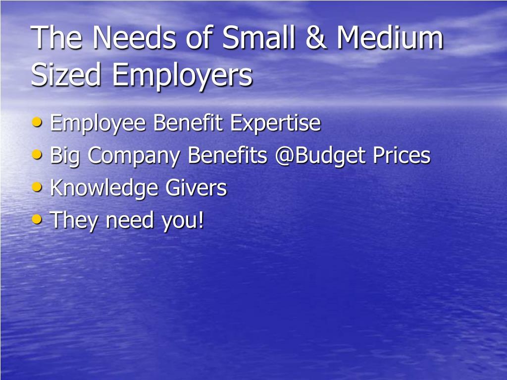 The Needs of Small & Medium Sized Employers