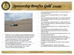sponsorship benefits gold 10 000
