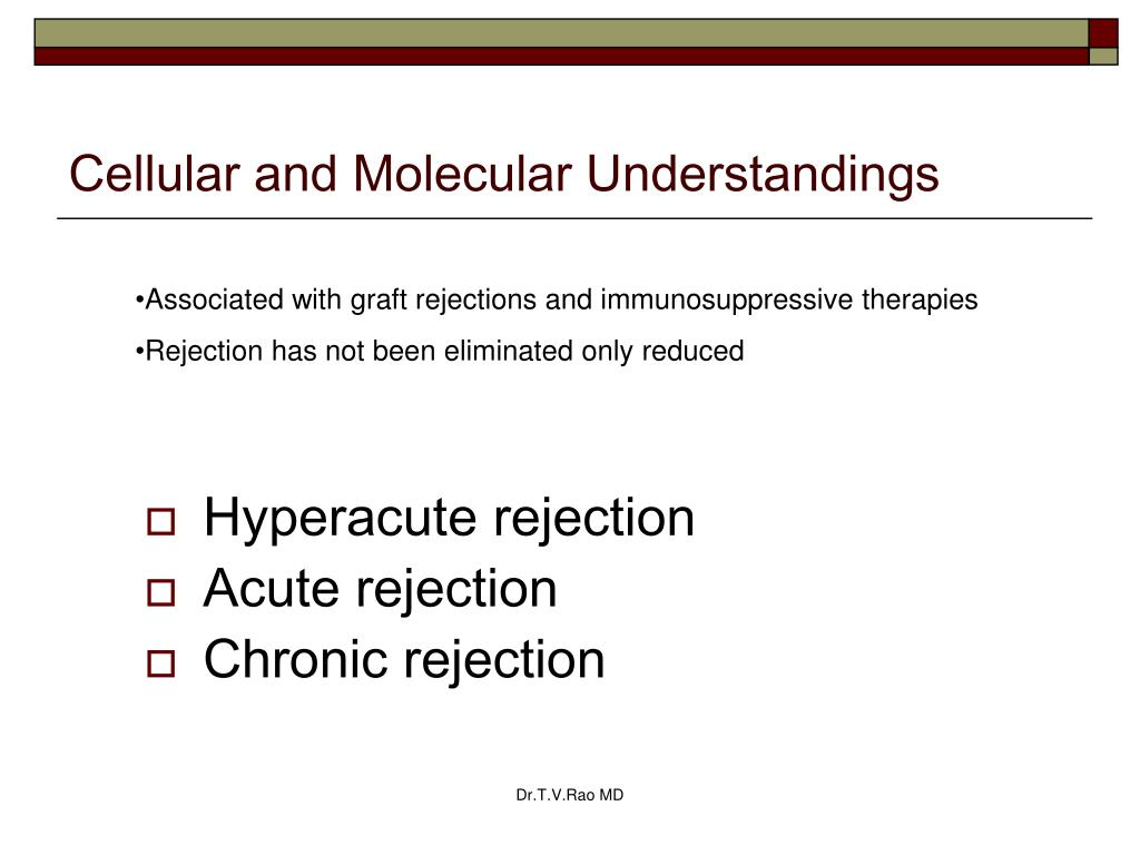 Cellular and Molecular Understandings