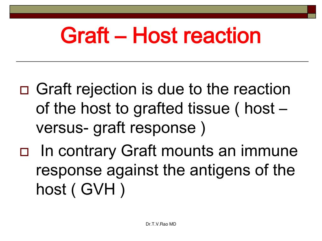 Graft – Host reaction