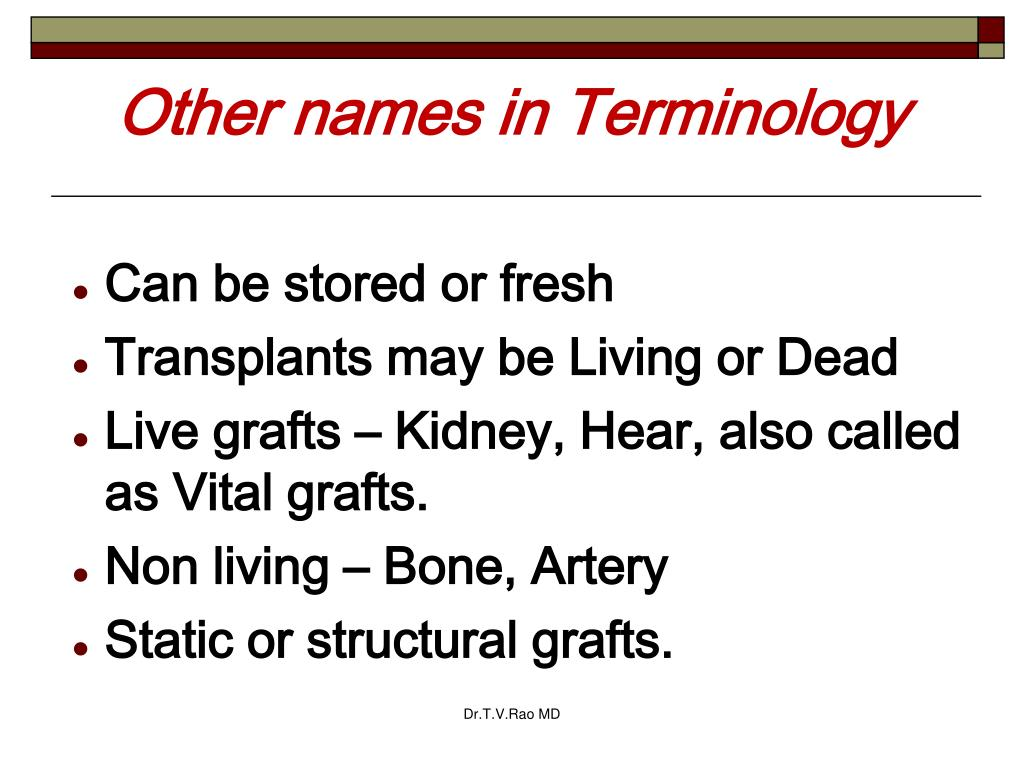 Other names in Terminology
