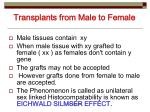transplants from male to female
