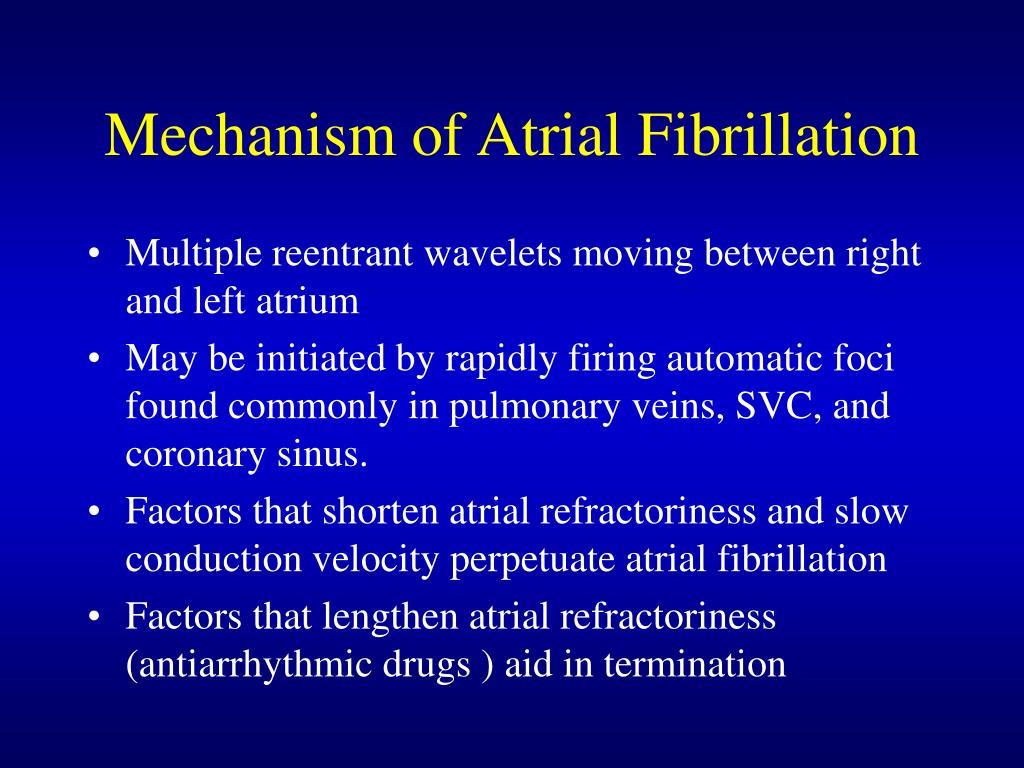 Mechanism of Atrial Fibrillation