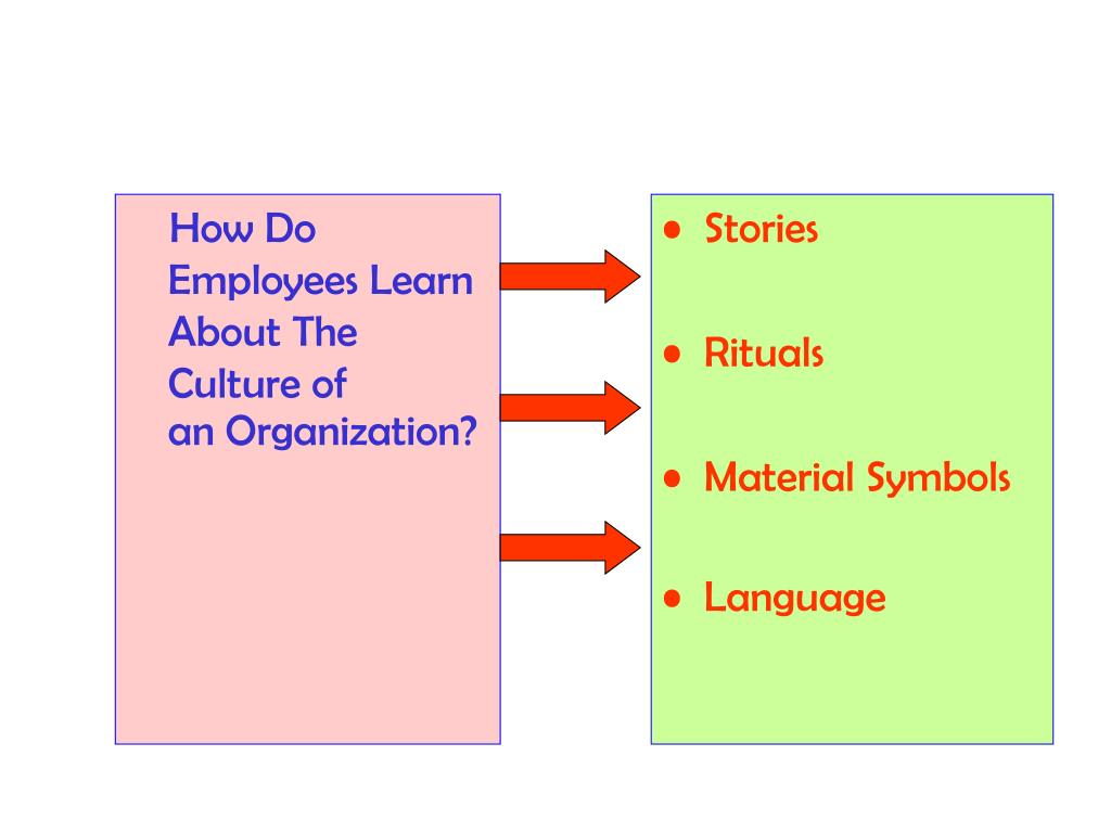 How Do Employees Learn About The Culture of                           an Organization?