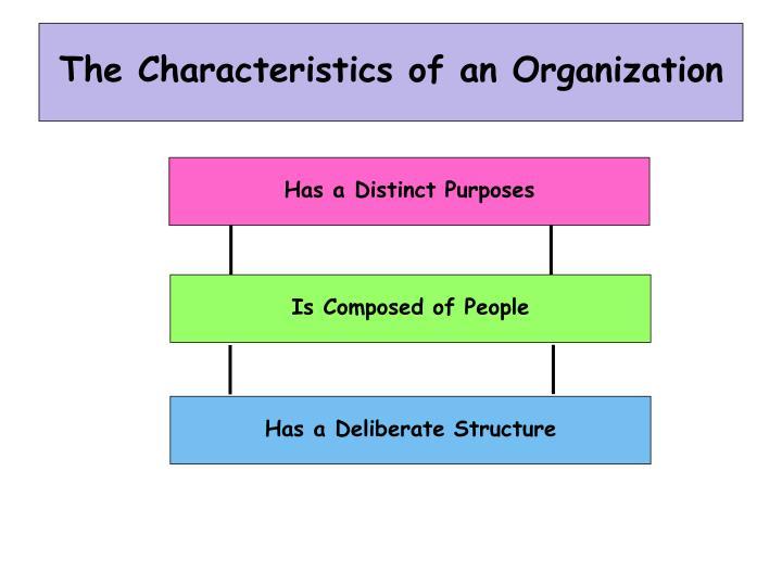 The characteristics of an organization