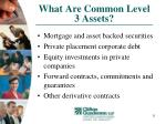 what are common level 3 assets