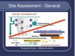 site assessment general8