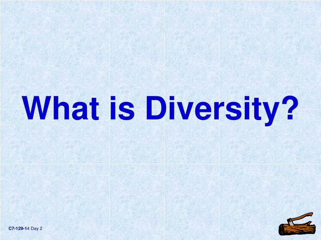 What is Diversity?