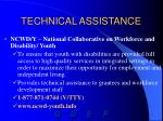 technical assistance28