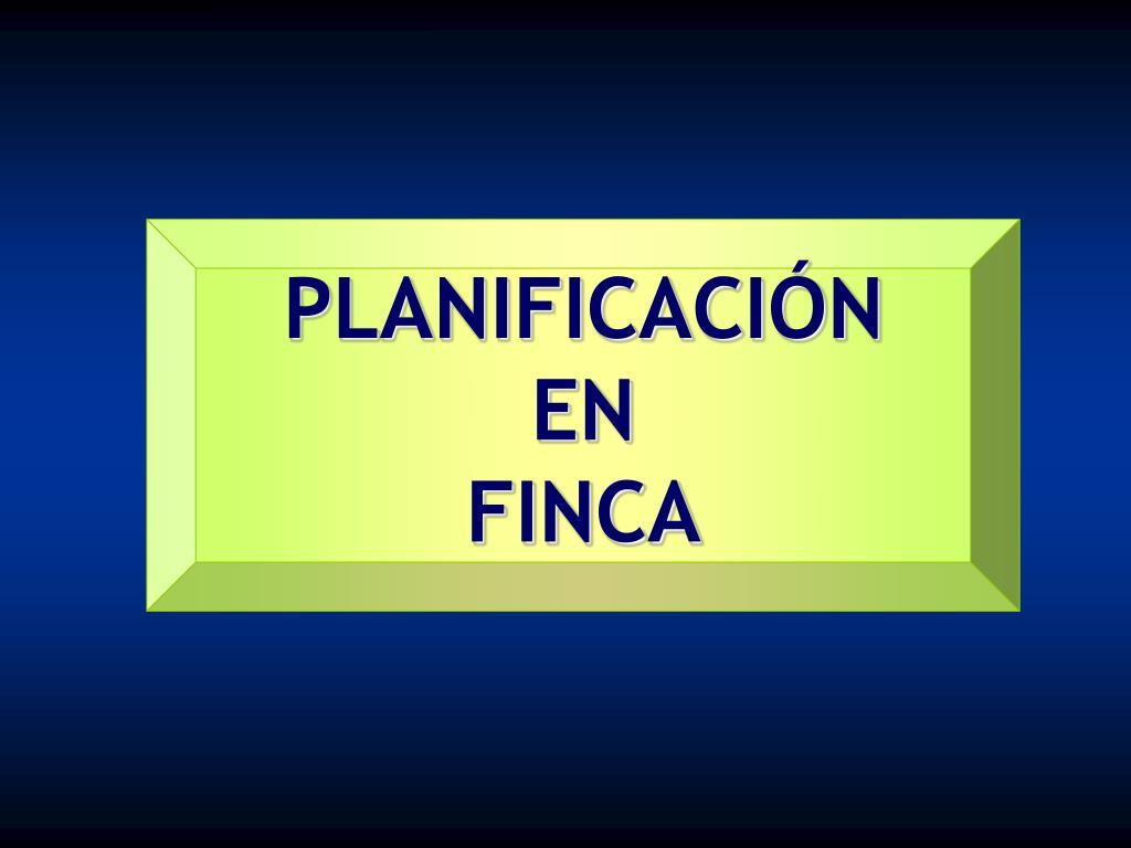 PLANIFICACIÓN EN               FINCA