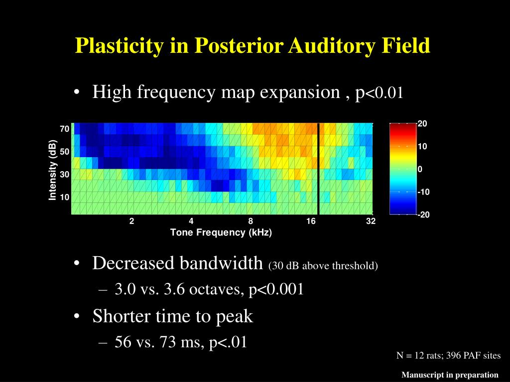 Plasticity in Posterior Auditory Field