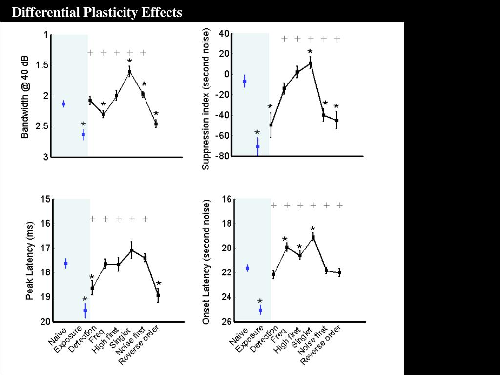 Differential Plasticity Effects
